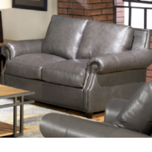 Usa PremiumStationary Leather Loveseat